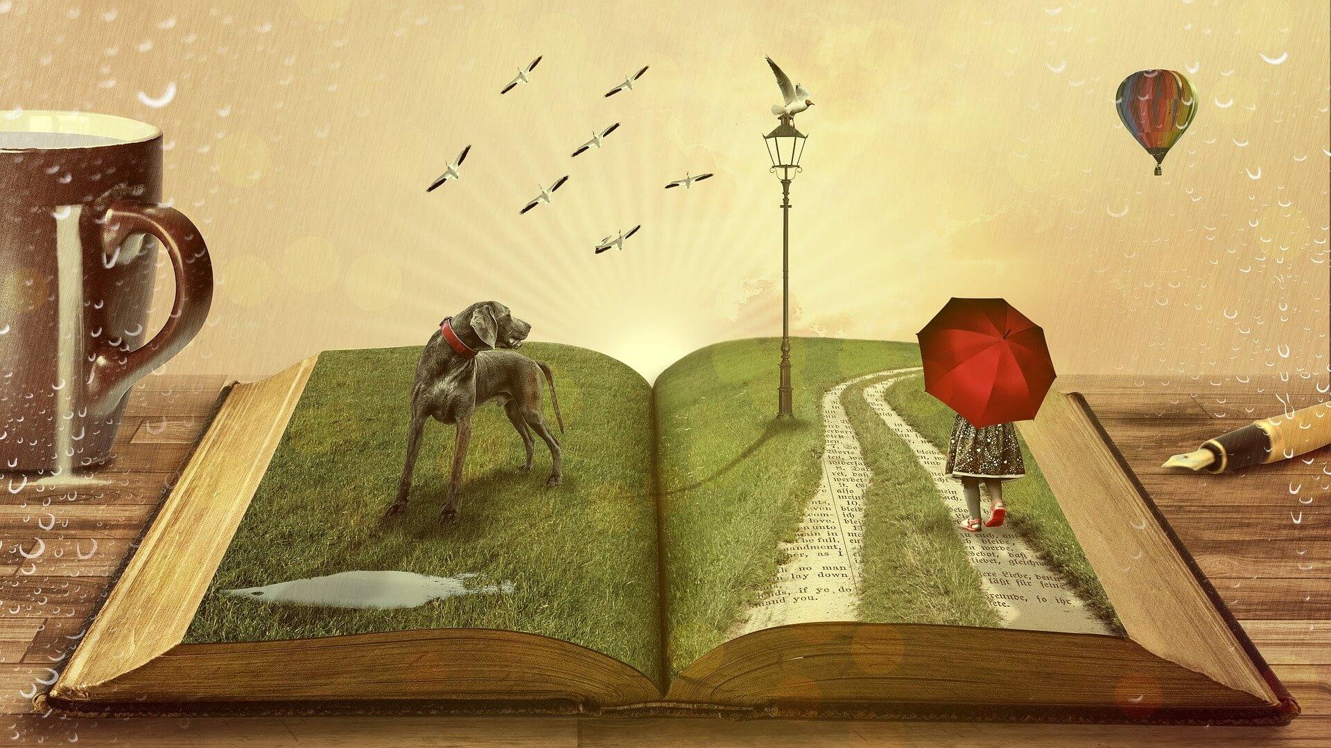 libros que recomendarías